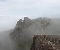 Чуть рассеялся туман ...