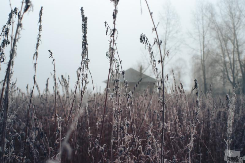 Осенний Тлен