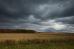 Русское поле и золотая осень