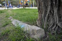 Парк-кладбище Зеленая роща