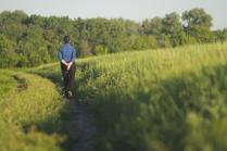 Прогулка у края поля
