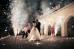 Случай на свадьбе