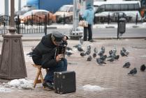 голуби и музыка