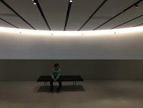 Один в музее