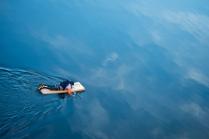 Проплывая по небу