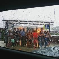 Rain. A bus-stop
