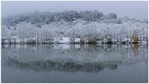Колыванский пруд