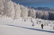 Прогулки в зимней сказке