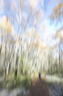 Прогулки в осеннем парке