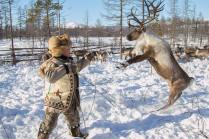 Олений лов