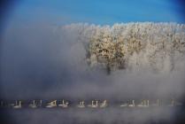 Зима на Лебедином озере