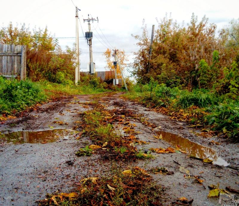 Осень в Удмуртии