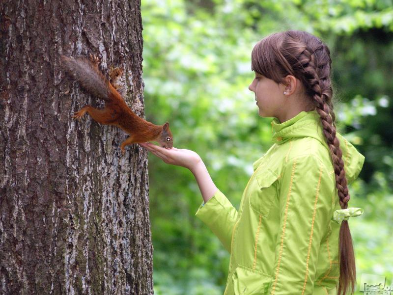 В гармонии с природой