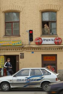 Пока профессора Преображенского нет дома...