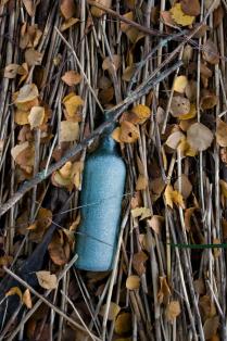 натюрморт с бутылкой и тросником.