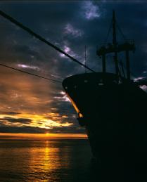 В порту...