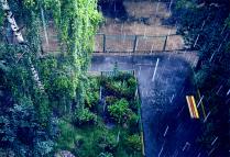 любовь под дождем