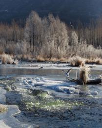 Колыма. На реке Дукча.