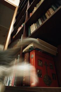Библиотекарь.