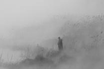 Плененный туманом.
