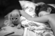 Спокойные ночи