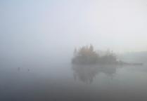 в тумане...