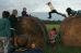 Мальчик прыгает по стогам