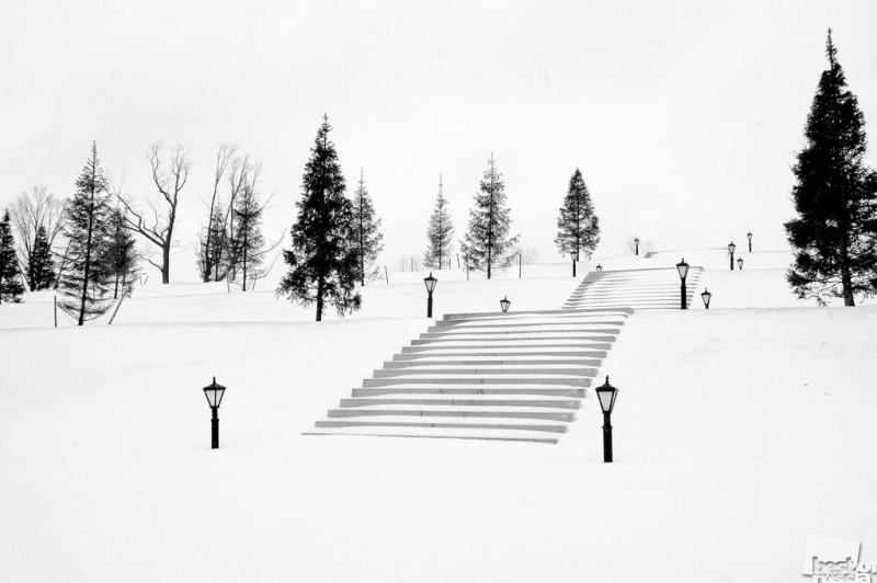 Снег покрывший фонари