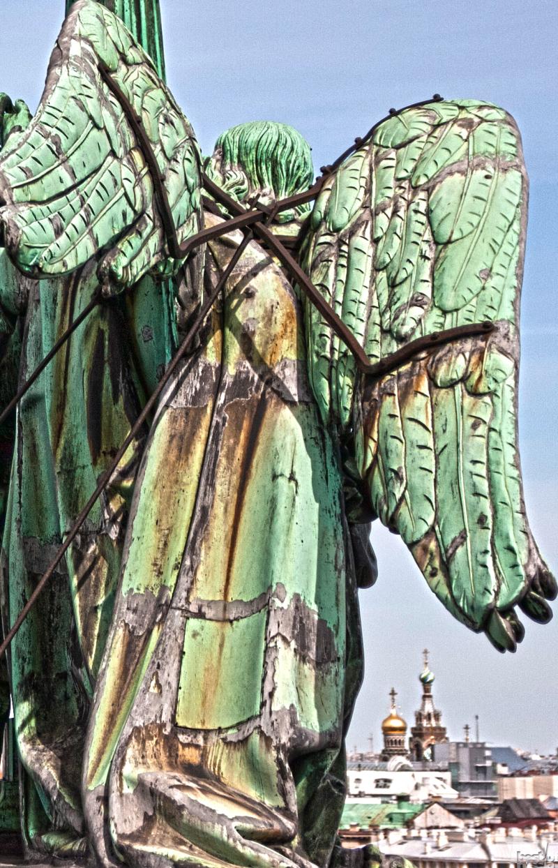 Крылья ангела.