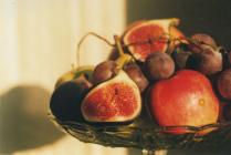 Плоды Возрождения