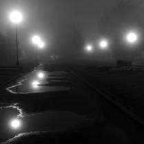 Осенний бульвар в осеннем тумане