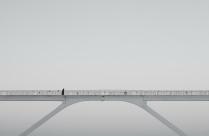 Ворона на мосту