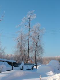 многоснежная зима