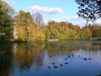 Ласковая осень