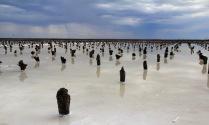 Соляное озеро Баскунчак