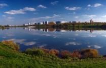 На берегу пруда.