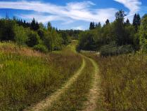Сельская дорога.