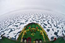 Улыбка Арктики