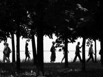 Люди меж деревьев