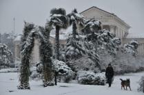 Снегопад в субтропиках