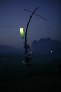 Светлячок в ночи