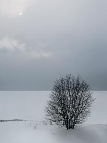 На берегу Охотского моря.
