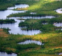 Мохнатые озера Ямала