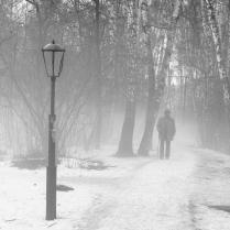 Шел седой старик туман