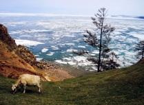 Байкальскими  тропами