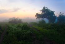 Ранним утром