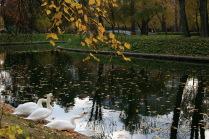 Парк Трубецких