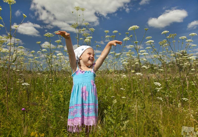 В траве и в облаках