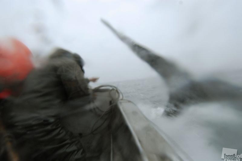 Охота на кита 1